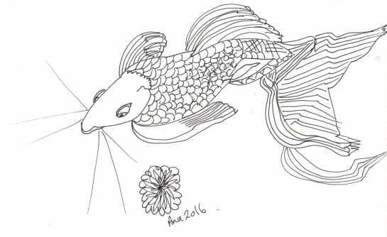ana m fish