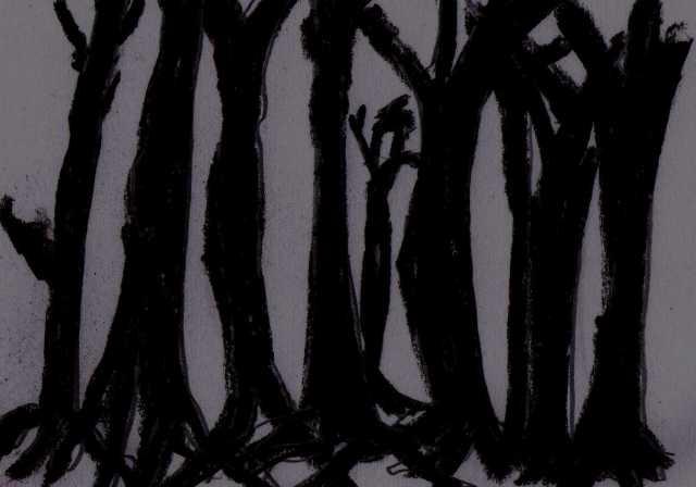 darker forest
