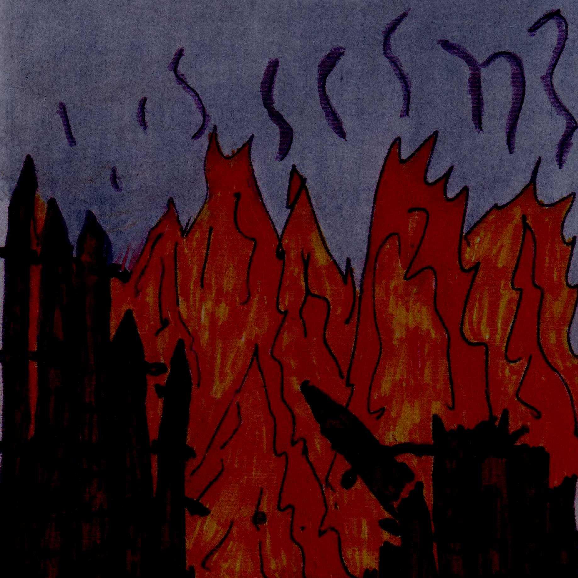 door flames