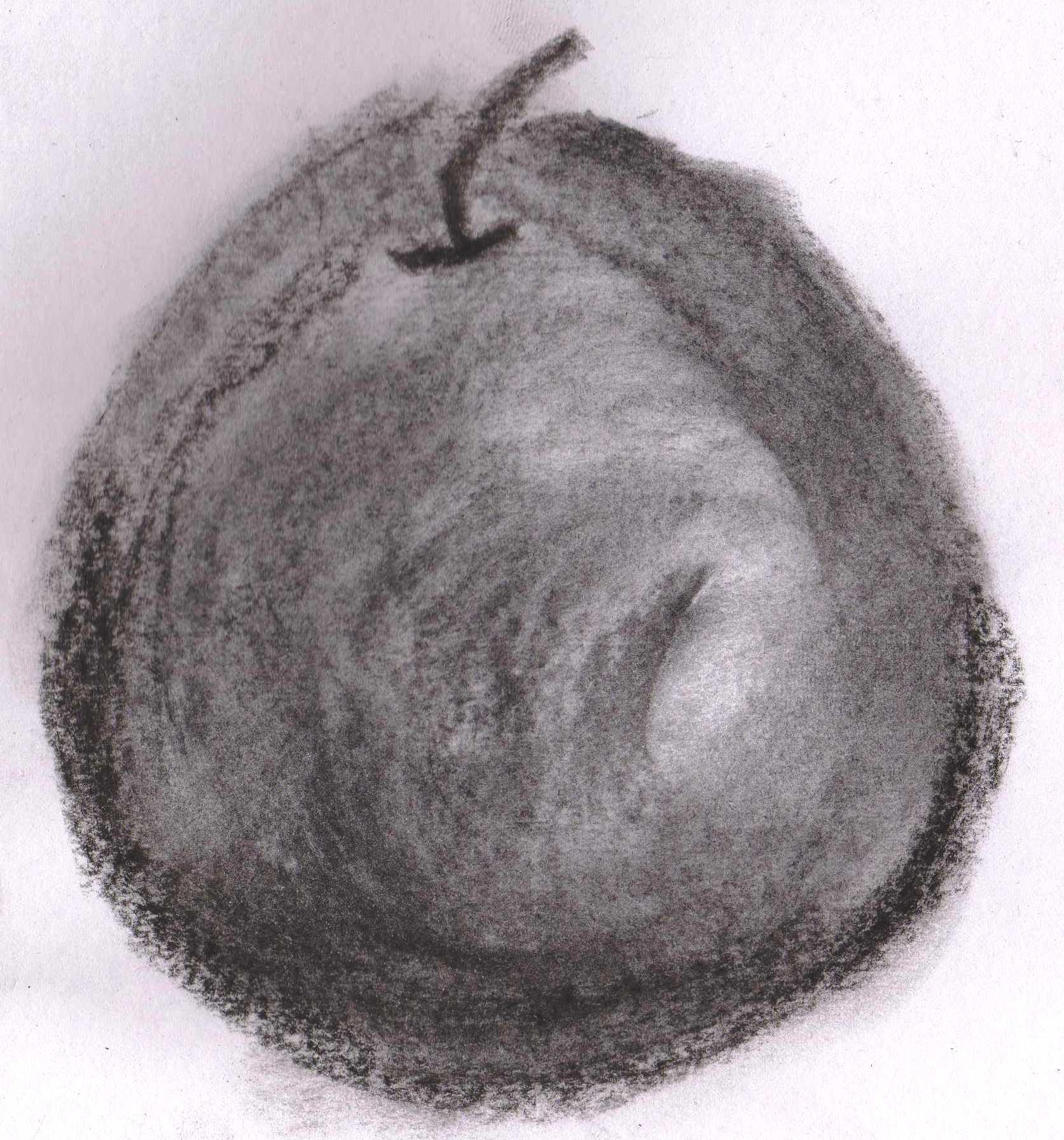 apple up.jpg