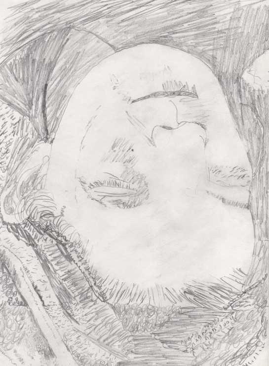upside down face.jpg