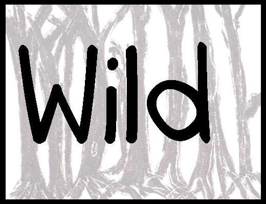 wild header.jpg