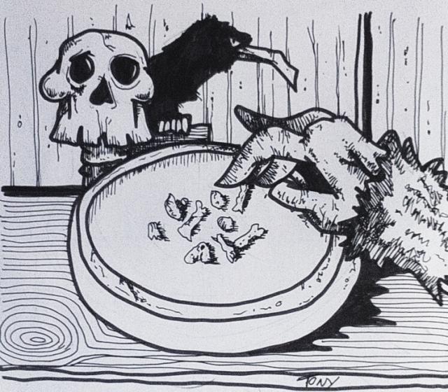 bones-tl-001-b