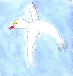 loki-bird-flipped