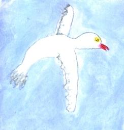 loki bird.jpg