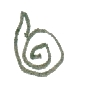 snake-005