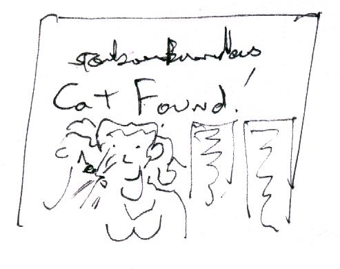 cat found.jpg