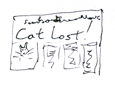 cat lost