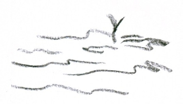 019 yg twig