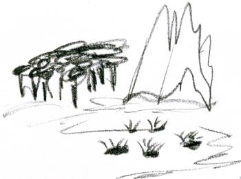 029 terrain types