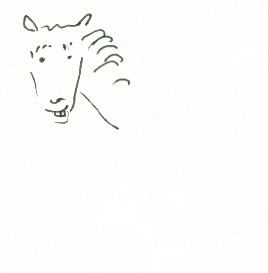 074 lady horse 02