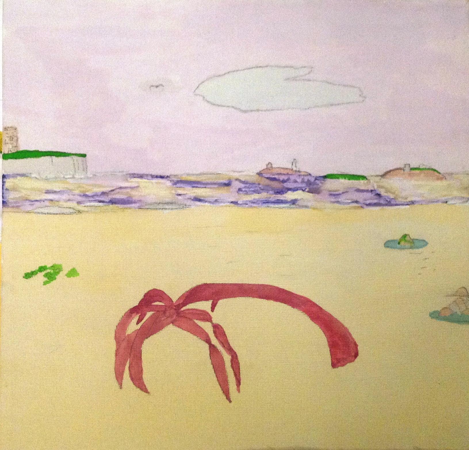 Seahouses Seaweed