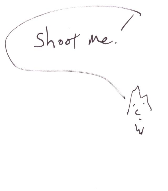 shoot 01