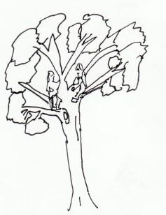 kids tree
