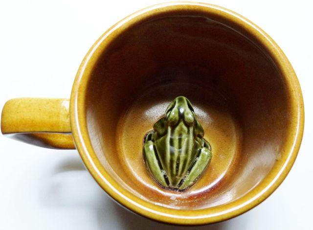 Frog_or_Surprise_mug